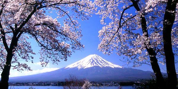 00012439(日本富士山)